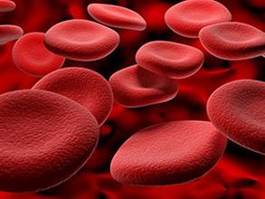 十博网红细胞