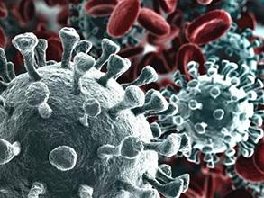 新型冠状病毒IgM, IgG, IgA抗体10bet十博网盒[ELISA法]